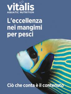 Vitalis brochure
